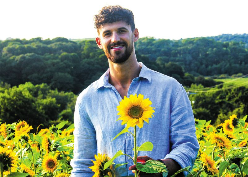 750,000 sunflowers in boost for two charities